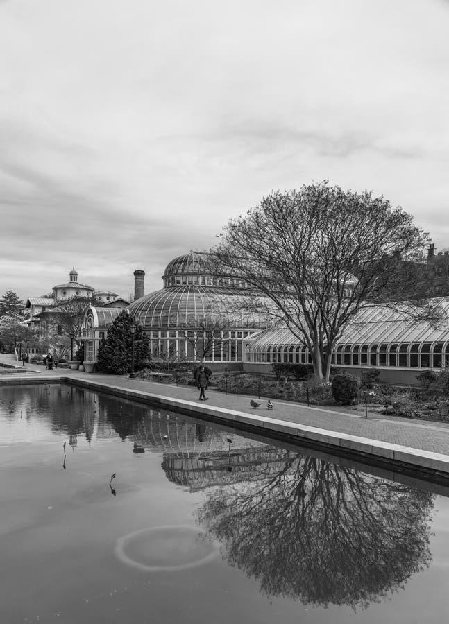 Brooklyn ogród botaniczny II obraz royalty free