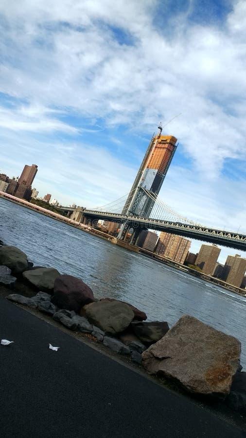Brooklyn wzrosty zdjęcie royalty free