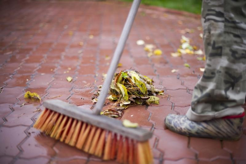 A broom removes  leaves from  yard stock image