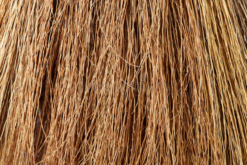 Download Broom Straw stock photo. Image of dirty, straw, branch - 29222738