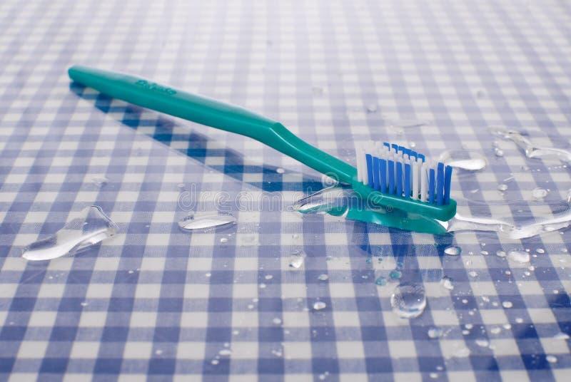 Brosse à dents humide photographie stock