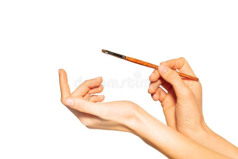 Brosse de sourcil dans des mains d'artiste de maquillage sur le blanc image stock