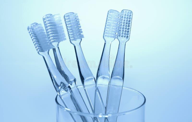 Brosses à dents photo libre de droits