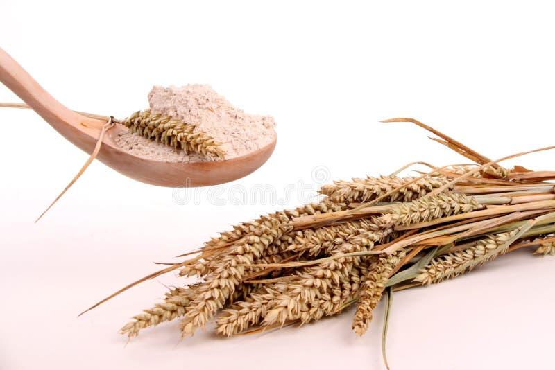 Brot und Mehl lizenzfreie stockbilder