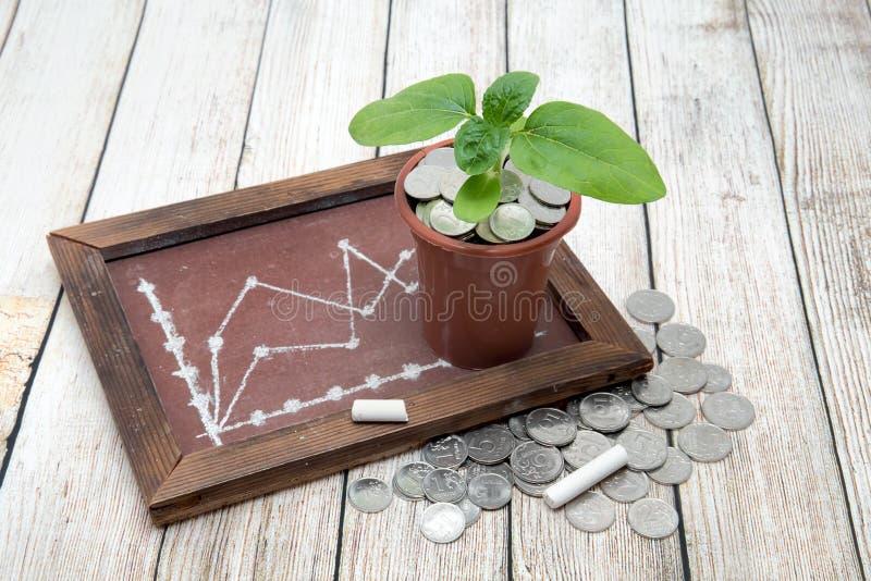 Brotar o girassol, o dinheiro do russo e uma placa com uma programação pintada fotografia de stock royalty free