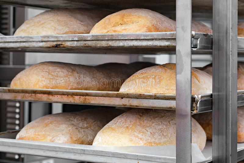 Brote im Regal in der Bäckerei lizenzfreie stockbilder