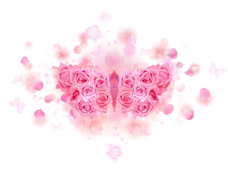 Brotes color de rosa de la mariposa del color de rosa imagenes de archivo