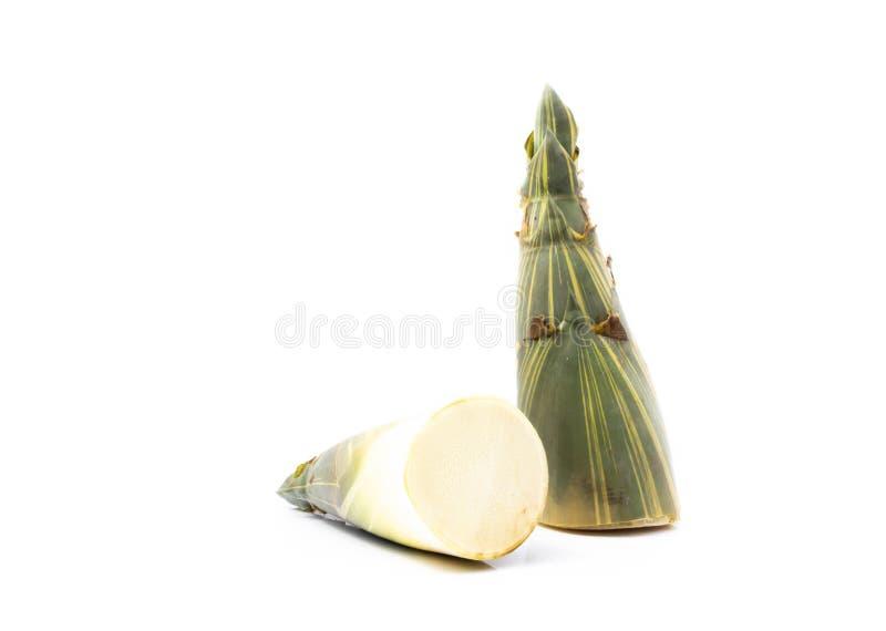 Brotes de bambú frescos en el fondo blanco fotografía de archivo