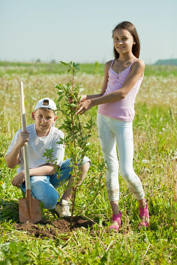 Brother and sister sets tree stock photography