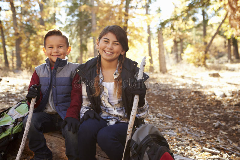 Brother and sister sitting on a fallen tree in a forest stock image