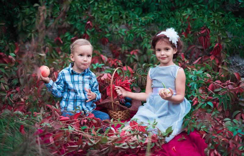 Brother and sister, two young children, eat ripe and delicious apples in the garden royalty free stock photos