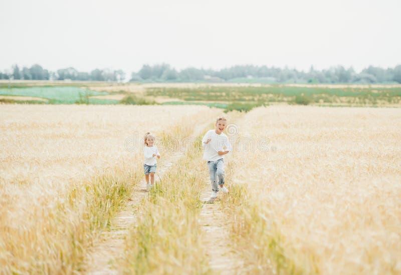 Brother y hermana linda que corren en el campo de trigo en día soleado fotografía de archivo libre de regalías