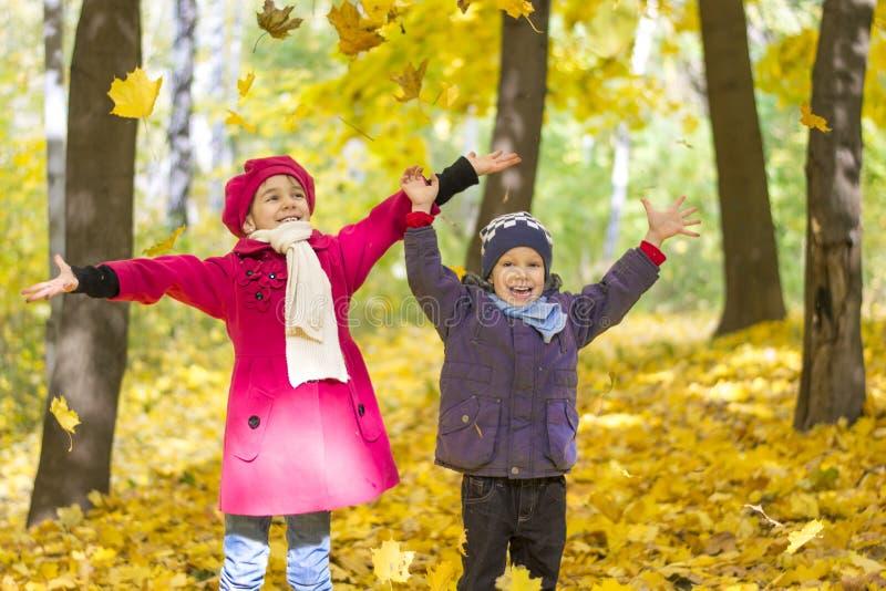 Brother y la hermana en parque del otoño complacen en lanzar para arriba las hojas amarillas, imágenes de archivo libres de regalías