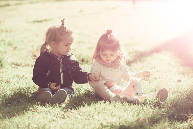 Brother y la hermana juegan con el caballo del juguete el d?a soleado fotos de archivo libres de regalías