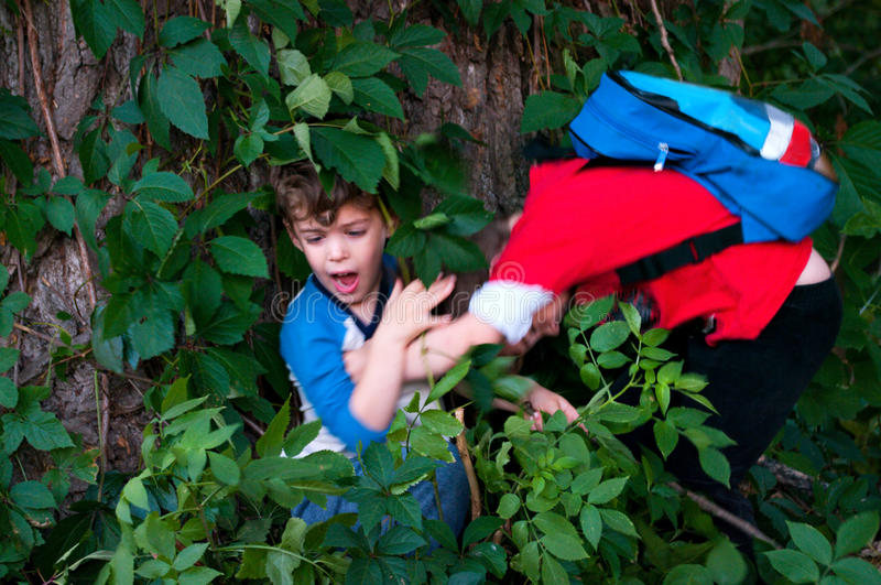 Brothers fight. Three year old twin boys fighting in the forest royalty free stock images
