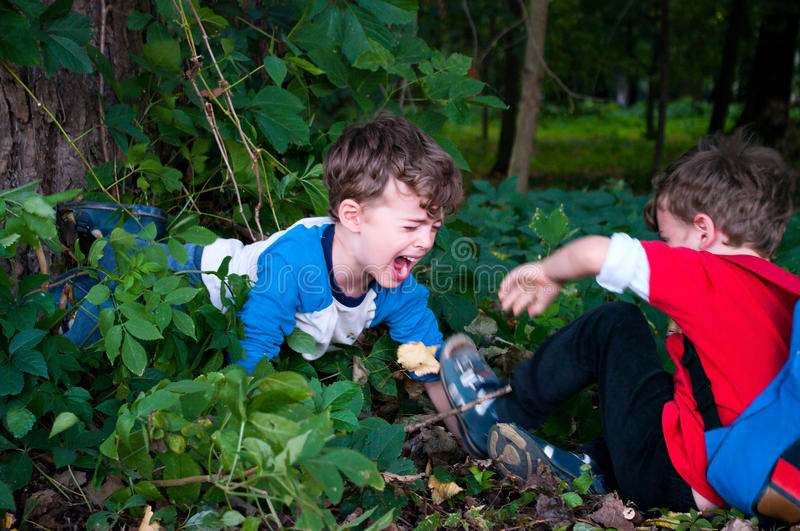 Brothers fight. Three year old twin boys fighting in the forest stock photo