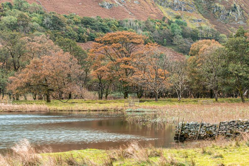 Brothers Water at Autumn in Lake District. Small lake in the eastern region of Lake District at rainy autumnal day stock photo