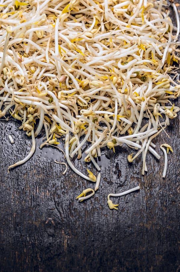 Broto de soja fresco no fundo de madeira escuro velho, vista superior fotos de stock royalty free