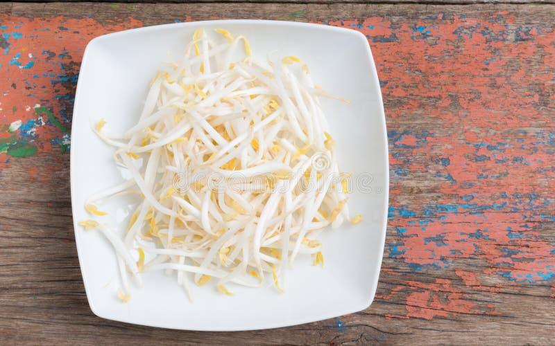 Broto de soja no fundo de madeira fotos de stock