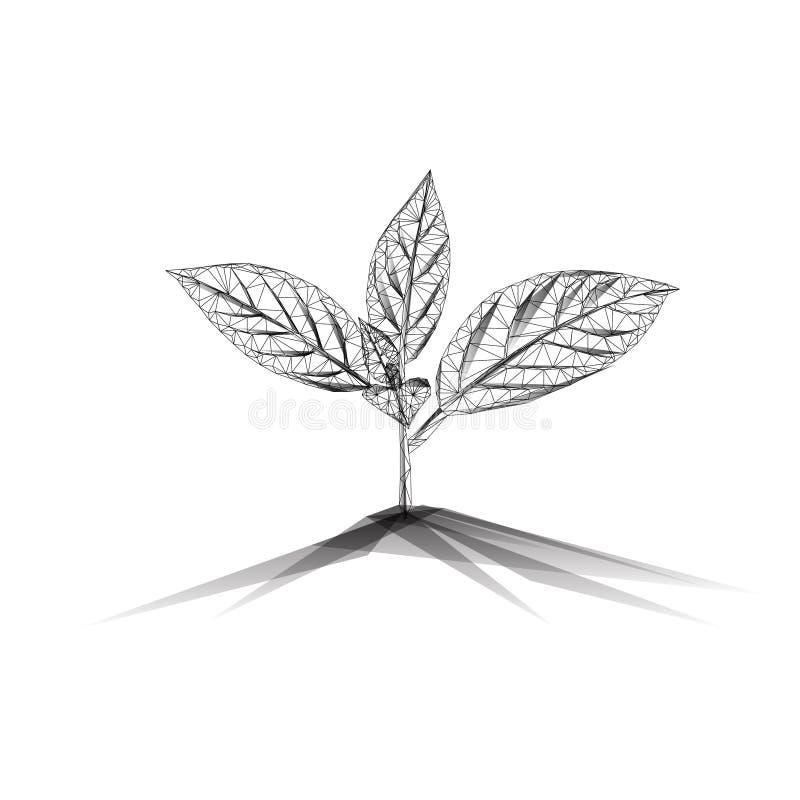 Broto novo plantado em um solo preto no fundo branco ilustração stock