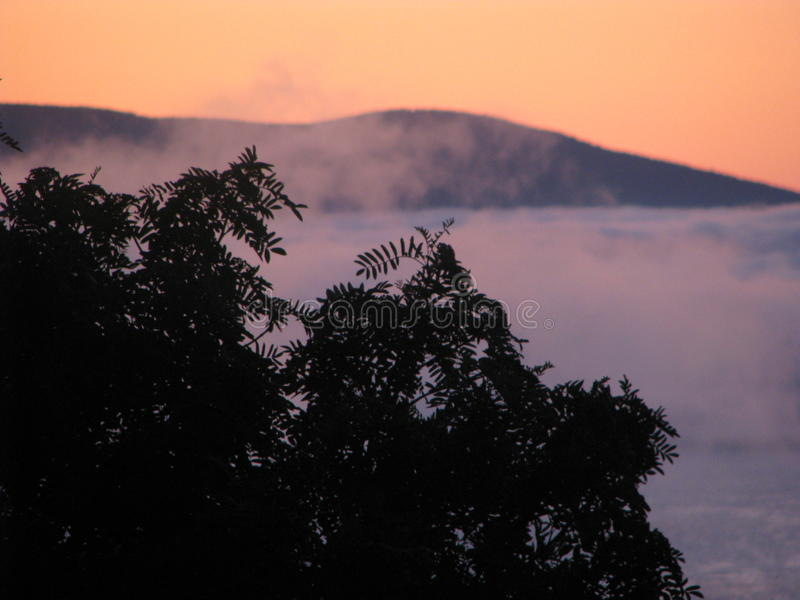 Brouillard étrange images stock