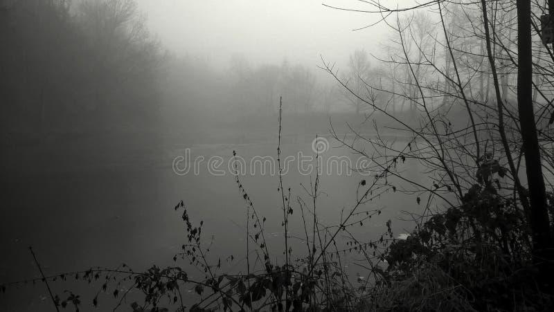 Brouillard au-dessus de l'étang photos libres de droits