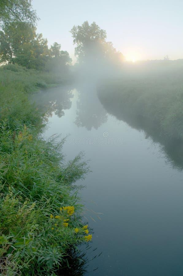 Brouillard au-dessus de Rice Creek images libres de droits