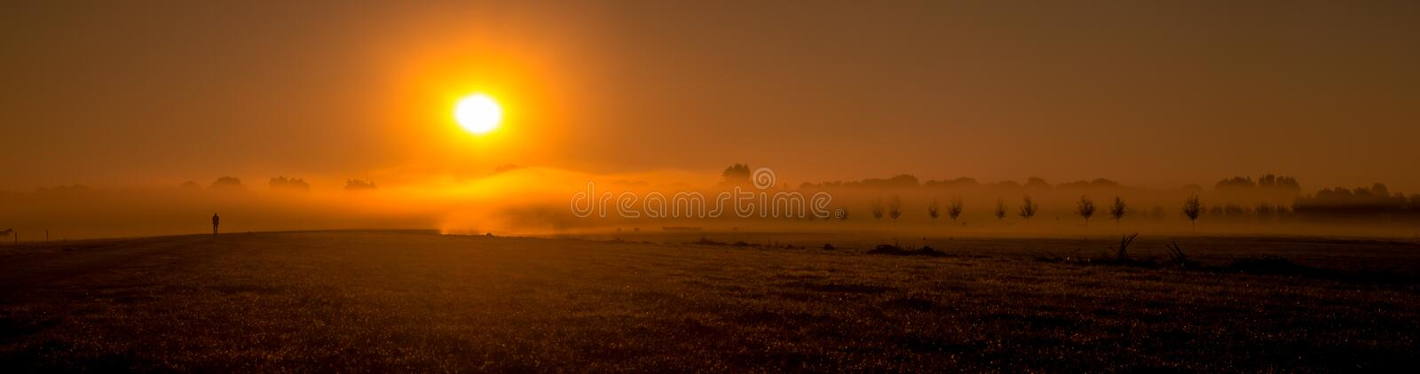 Brouillard au-dessus du champ photo stock