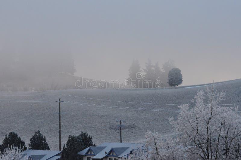 Brouillard congelé sur le voisinage et la colline photos stock