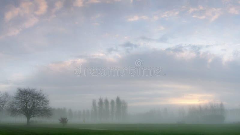 Brouillard d'aube sur un terrain de golf image libre de droits