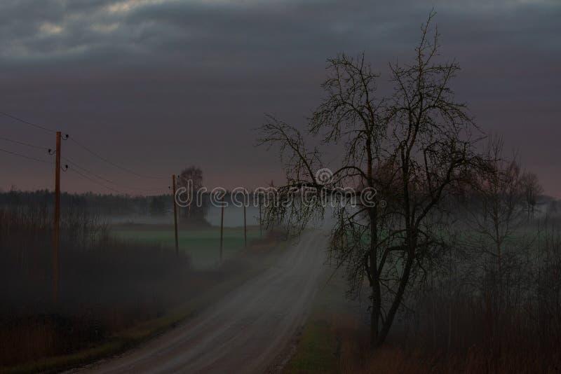 Brouillard dans la distance, et un arbre de hantise du côté droit photographie stock libre de droits