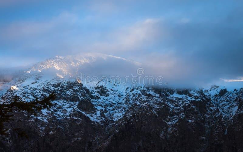 Brouillard dans les montagnes image stock