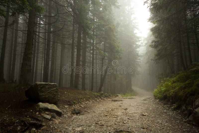Brouillard dans Tatras photos stock