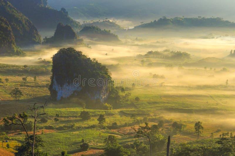 Brouillard de lever de soleil images libres de droits
