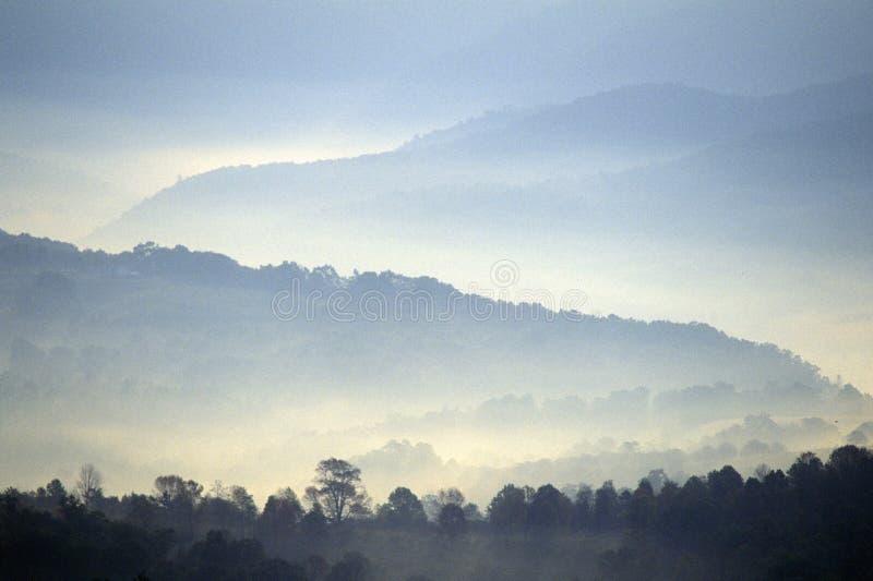 Brouillard de matin au-dessus de l'itinéraire scénique 219, WV des USA de route images stock