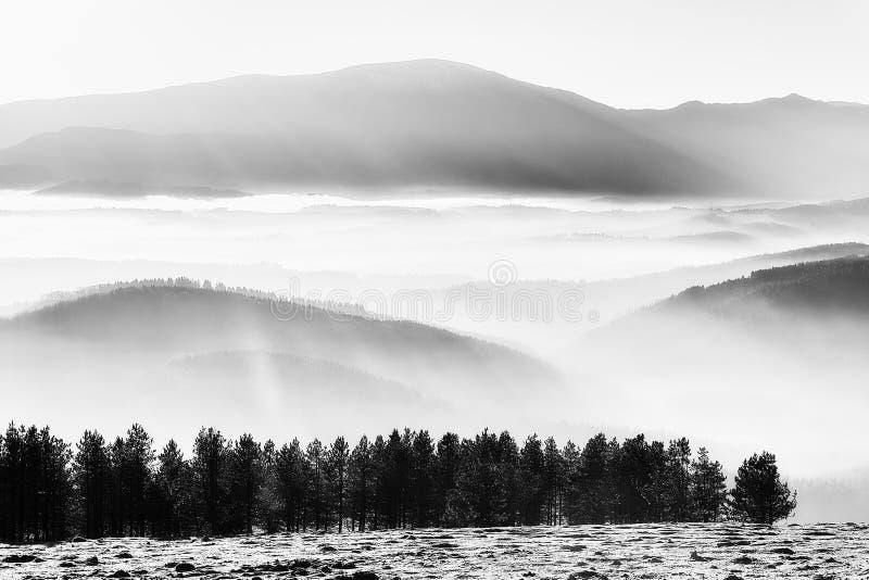 Brouillard de matin dans la vallée avec les montagnes brumeuses images libres de droits