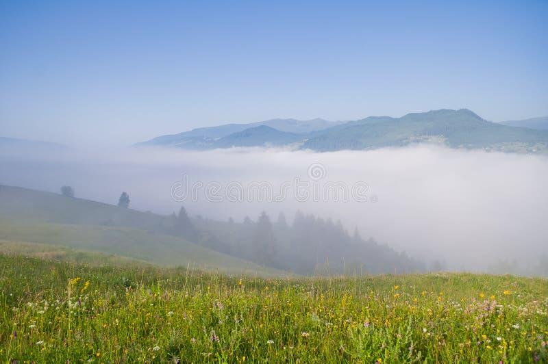 Brouillard de matin dans la vallée de montagne Horizontal de montagne d'été images libres de droits
