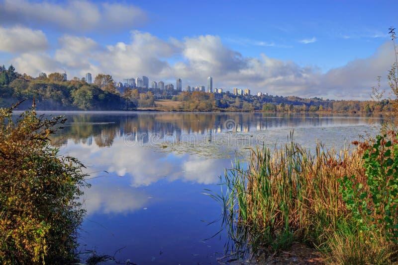 Brouillard de matin dans le lac deer images libres de droits