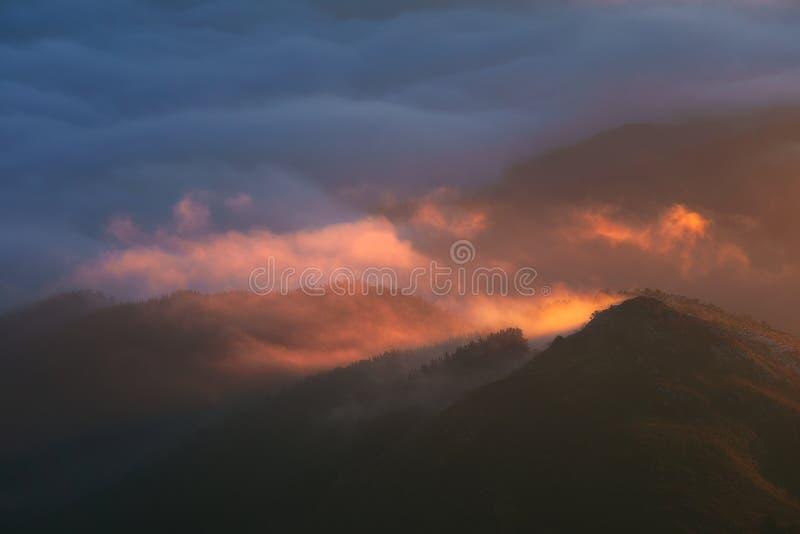 Brouillard de matin dans les montagnes lointaines au lever de soleil photos libres de droits