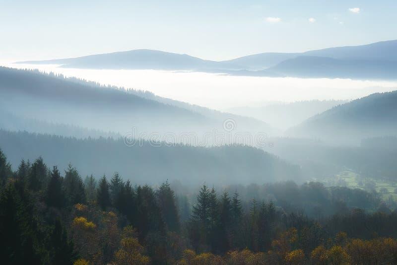 Brouillard de matin en montagnes photo libre de droits