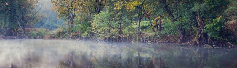 Brouillard de matin sur le lac photos stock