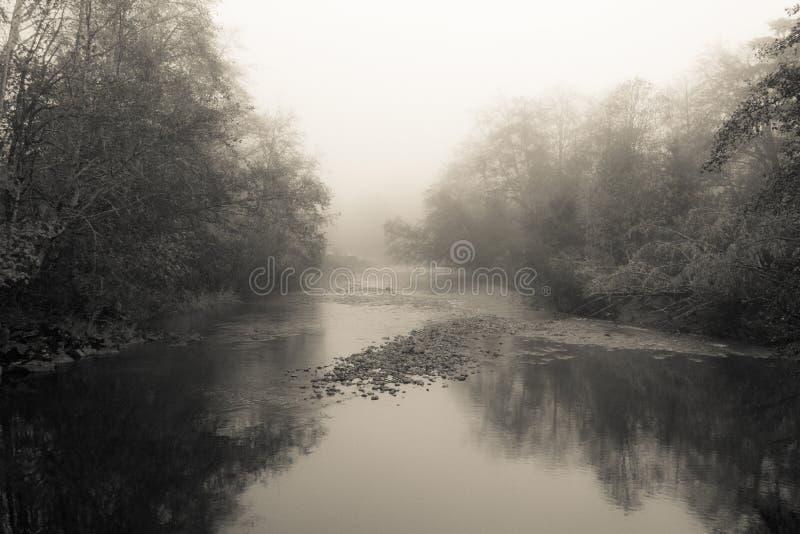 Brouillard de rivière de Nehalem photos libres de droits