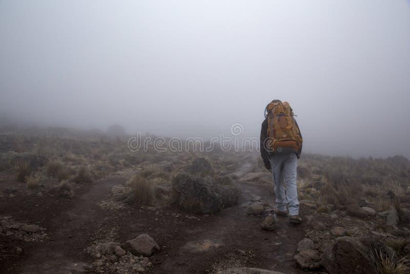 Brouillard de vagabond image libre de droits