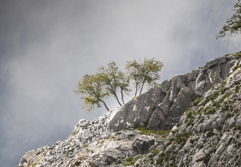Brouillard en hausse photo stock
