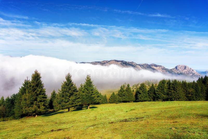 Brouillard en montagnes d'Urkiola au matin photographie stock libre de droits