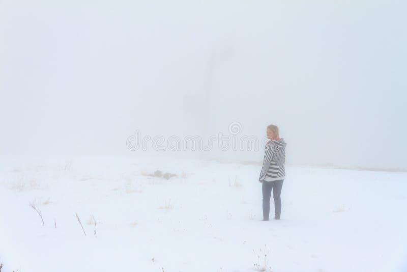 Brouillard en parc naturel de Rila images stock