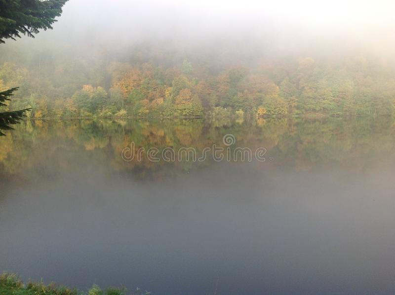 Download Brouillard et forestlake photo stock. Image du brouillard - 45370842