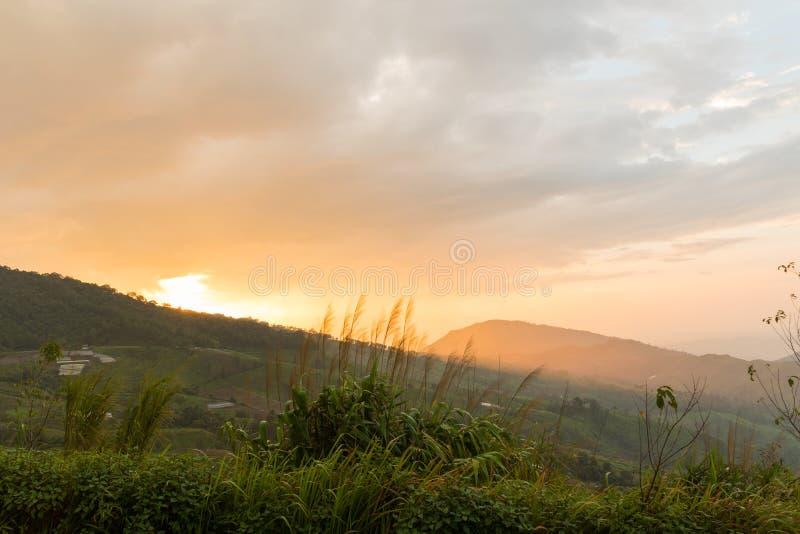 brouillard et nuage au-dessus des montagnes photos libres de droits