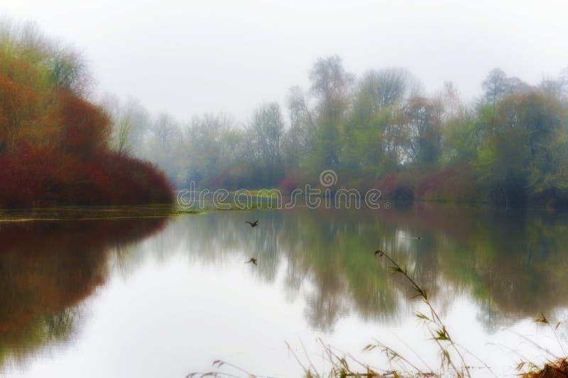 Brouillard et paysage de couleurs d'automne de lac mission, Orégon images libres de droits