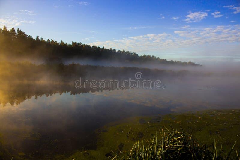 Brouillard sur la rivière photo stock
